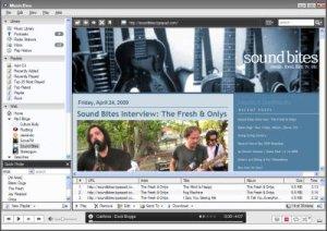 MusicBee – et godt gratis musikprogram