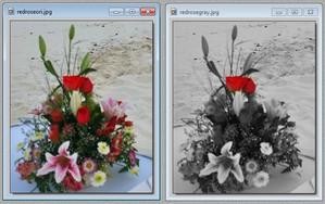 Sort hvide billeder med farver