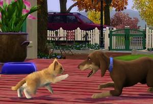 Sims 3 Kæledyr