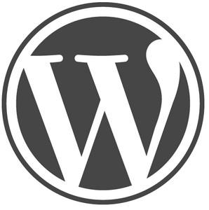 Denne gang skal der tales om Wordpress